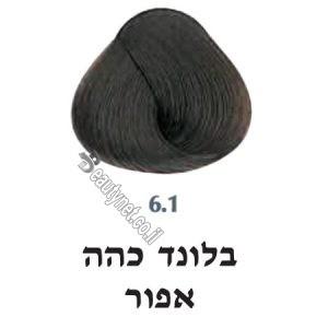 צבע לשיער 6.1 בלונד כהה אפור