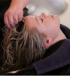 מוצרים לשיער